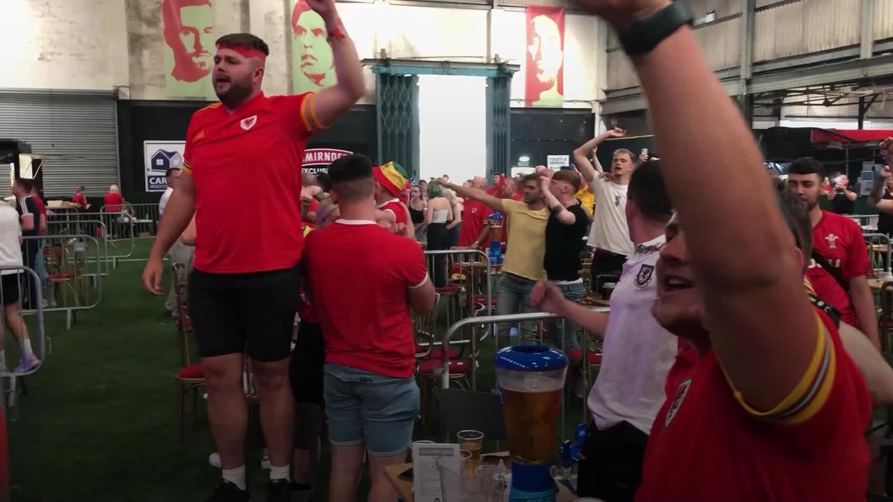 Wales fans in Cardiff celebrate 2-0 win over Turkey