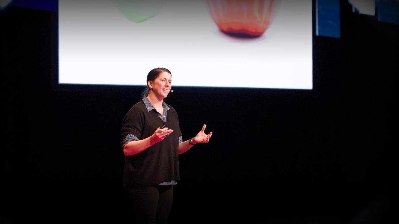 Big data, small farms and a tale of two tomatoes   Erin Baumgartner