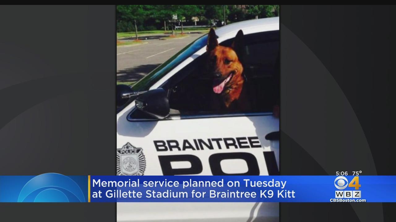 Funeral Service To Be Held At Gillette Stadium For Slain Braintree Police K-9 Kitt