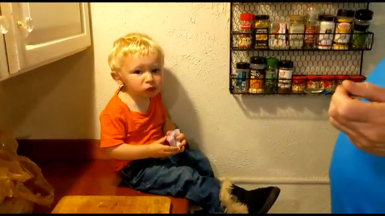 'My kid HATES being told what to do': Stubborn toddler eats raw onion after grandad says not to