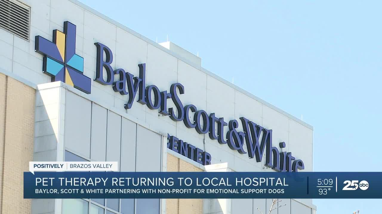 Pet therapy is returning to Baylor Scott & White this summer