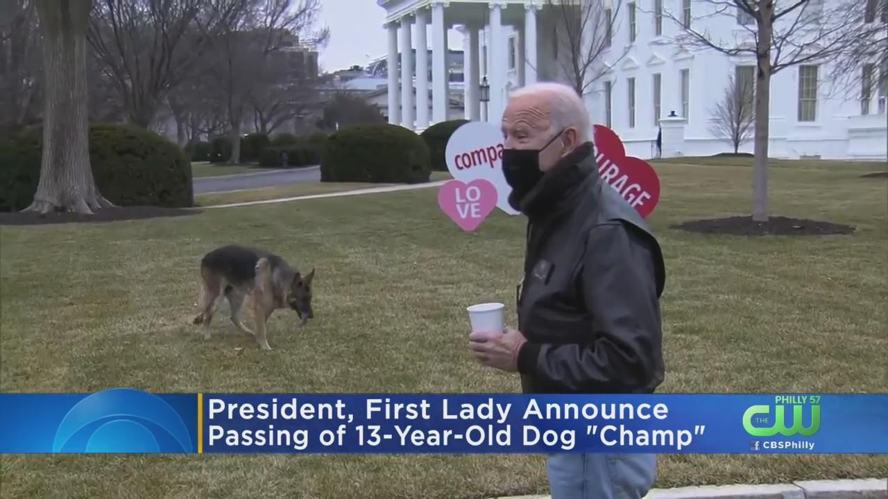Bidens' Announce Passing Of 13-Year-Old Dog Champ