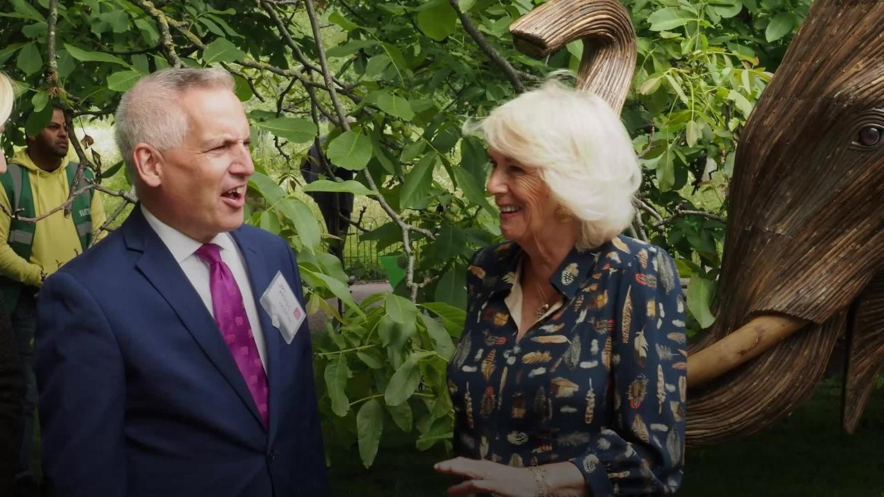 Camilla tells of hay fever struggle as she opens story trail in London