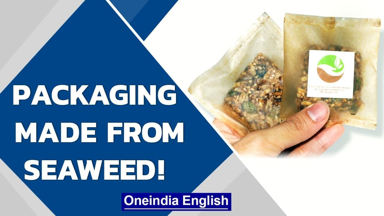 Seaweed packaging? How Indonesia & Norway are replacing plastic with seaweed | Oneindia News