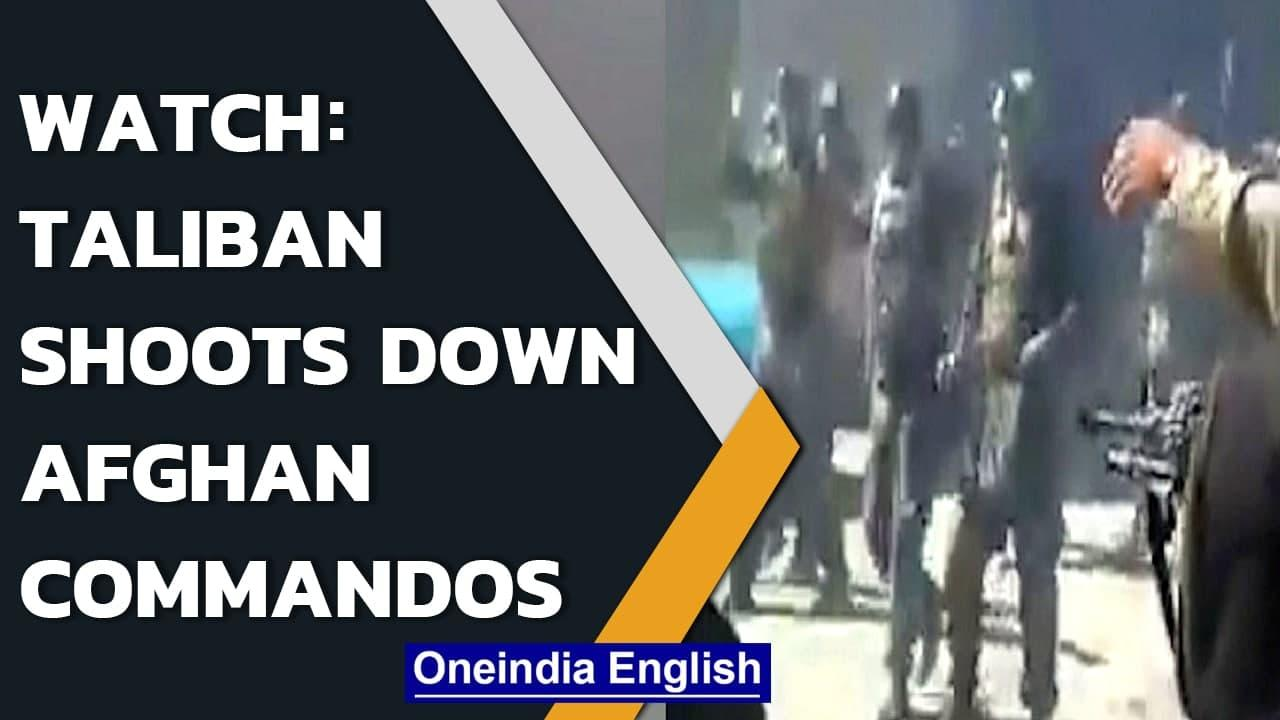 Video: Taliban members allegedly shoot down 22 Afghan commandos in Faryab | Watch | Oneindia News