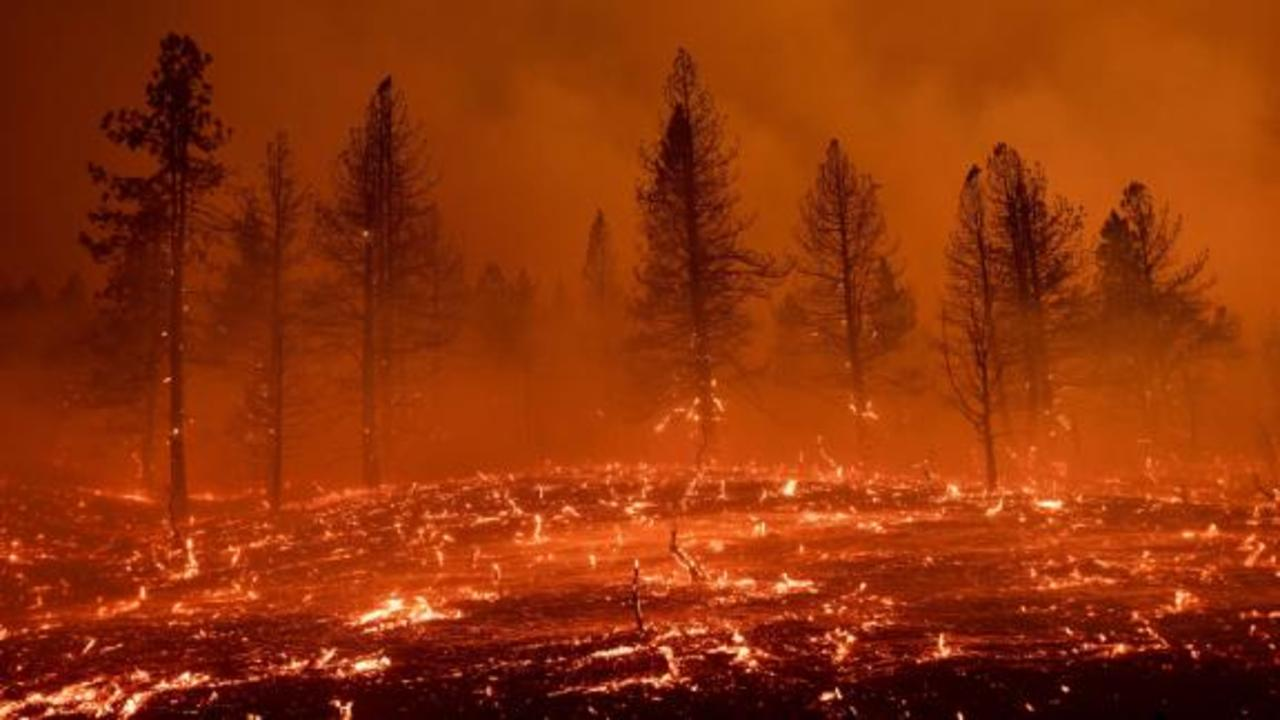 US suffering worst wildfire season in a decade