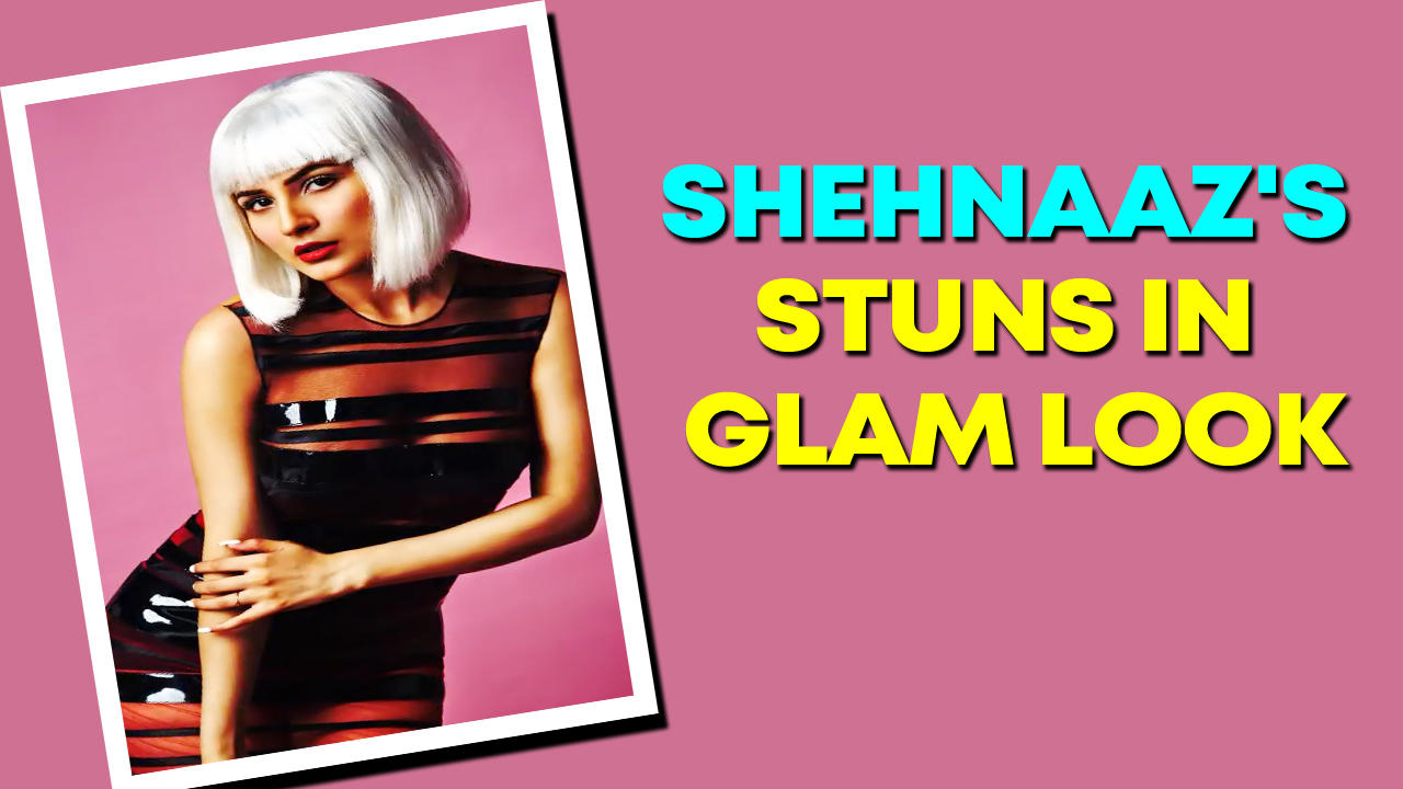 Shehnaaz Gill graces cover of a leading magazine