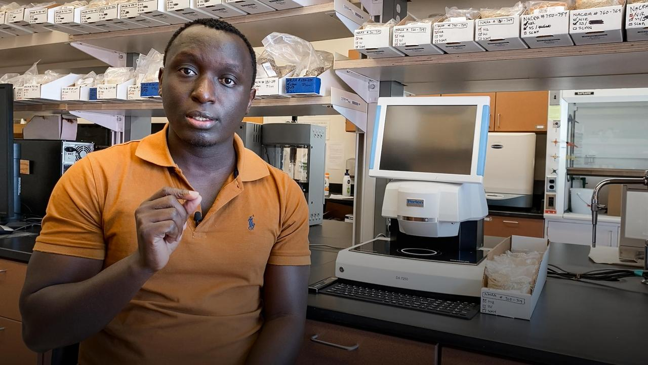 How quinoa can help combat hunger and malnutrition | Cedric Habiyaremye