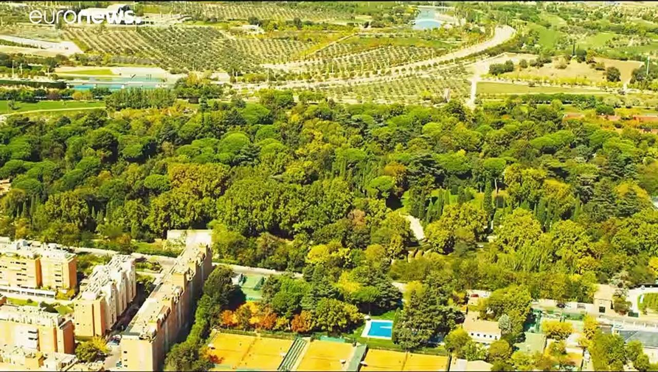 Madrid building a huge urban forest in bid to combat climate change