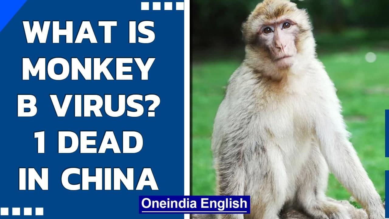 Monkey B Virus claims its first victim in China| What are the symptoms and causes| Oneindia News
