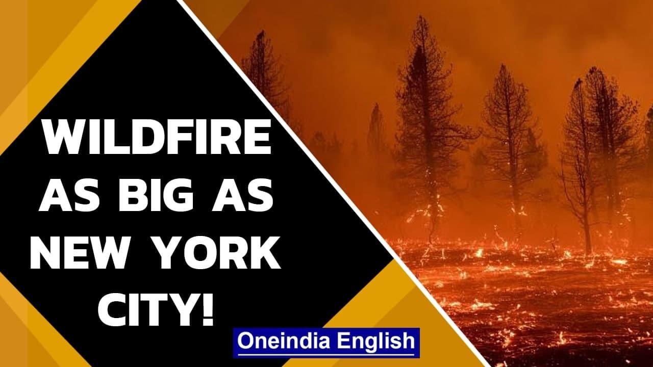 USA: Wildfire continues to ravage Oregon from July 6   Firefighters forced to retreat  Oneindia News