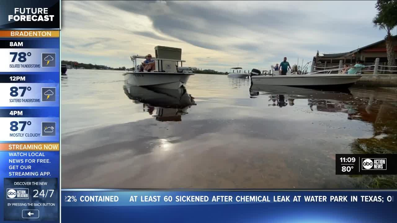 Scallop season gets underway in Pasco County