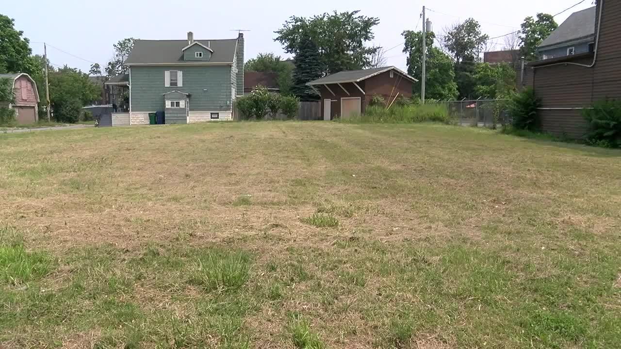 Lots of Clover: initiative to reshape Buffalo's empty lots