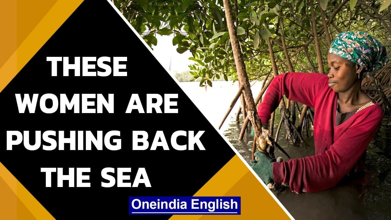 Senegalese women who are pushing back the sea, reclaiming land   Oneindia News