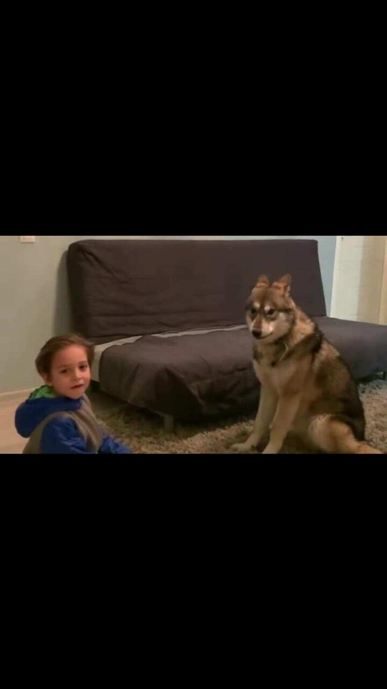 Epic howling competition between boy and his wolf