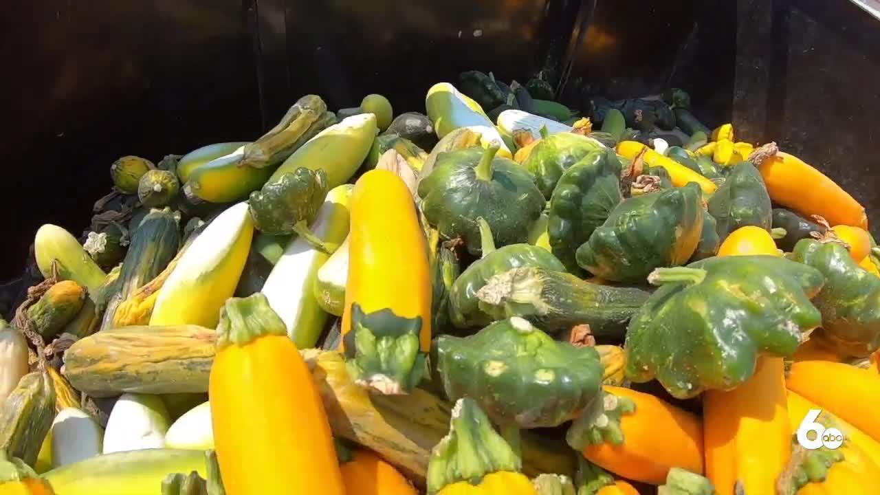Idaho farmers feeling the impacts of heatwave