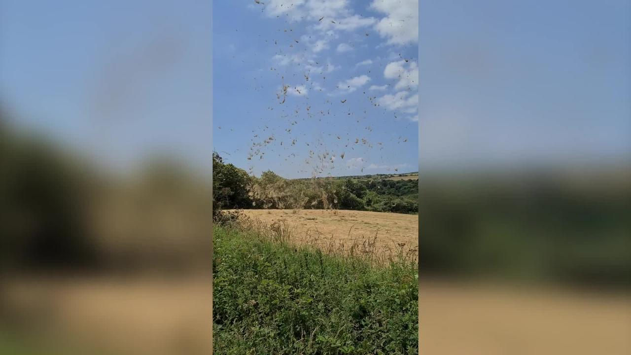 This footage shows a 'dust devil' caught on video in a British field