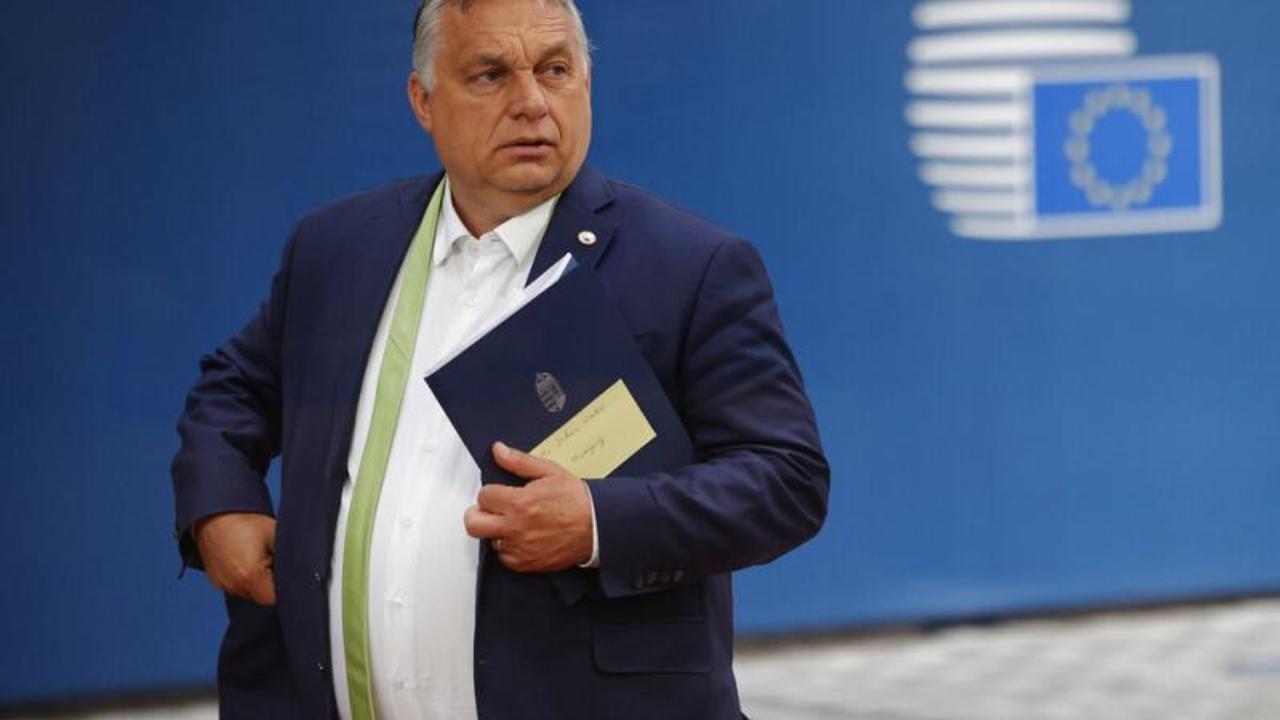 Hungary's Viktor Orban will hold referendum on anti-LGBT law