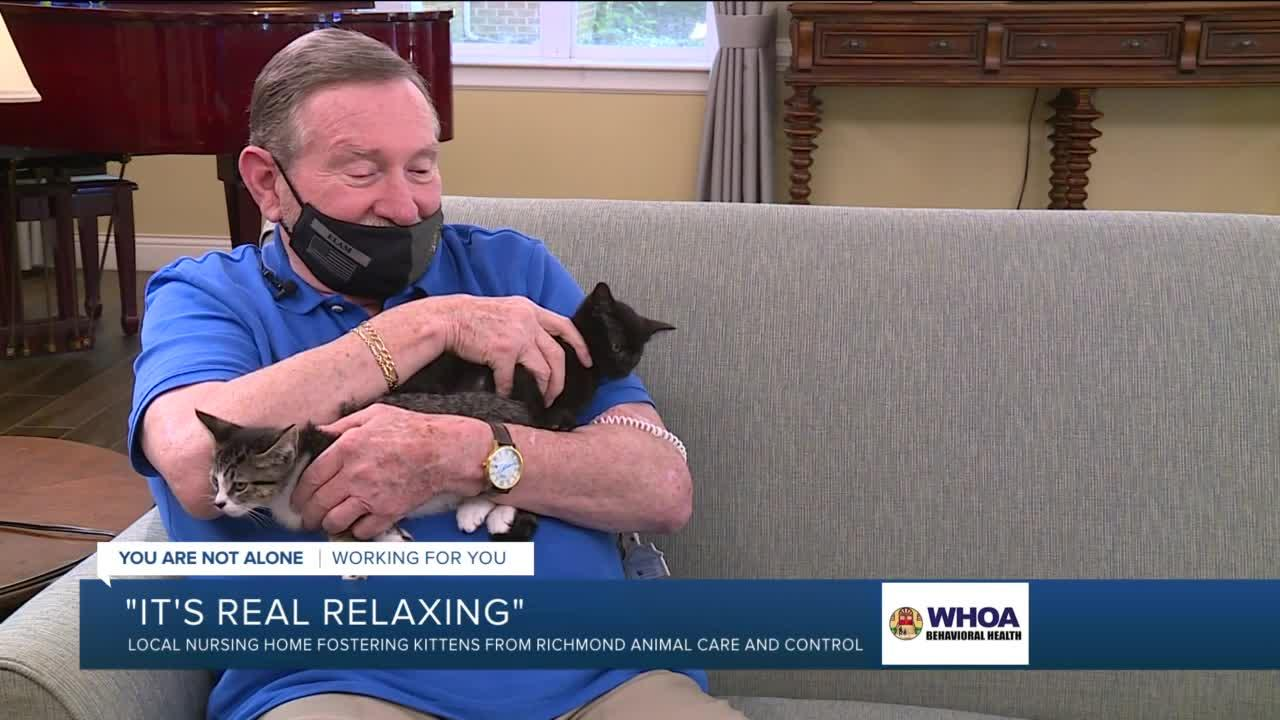 Fostering kittens is 'win-win' for Virginia assisted living community