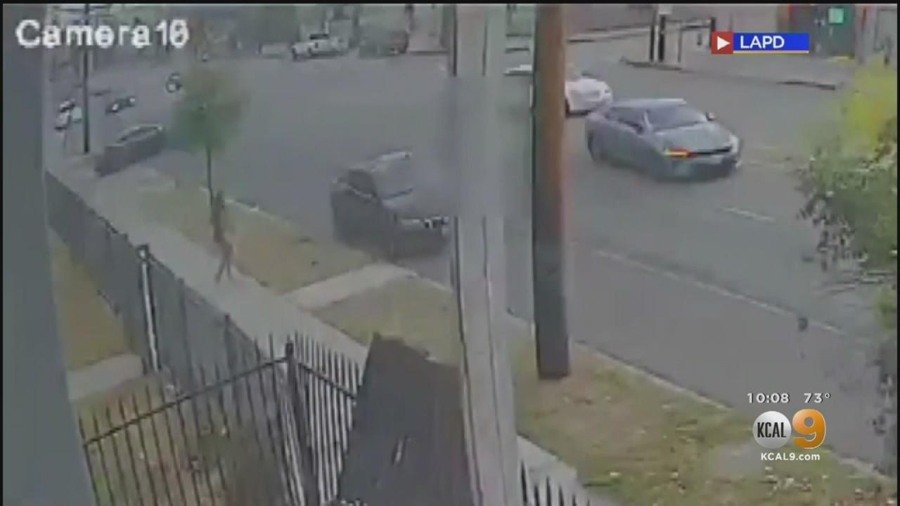 LAPD Looking For Driver Who Fatally Struck 59-Year-Old Man In South LA