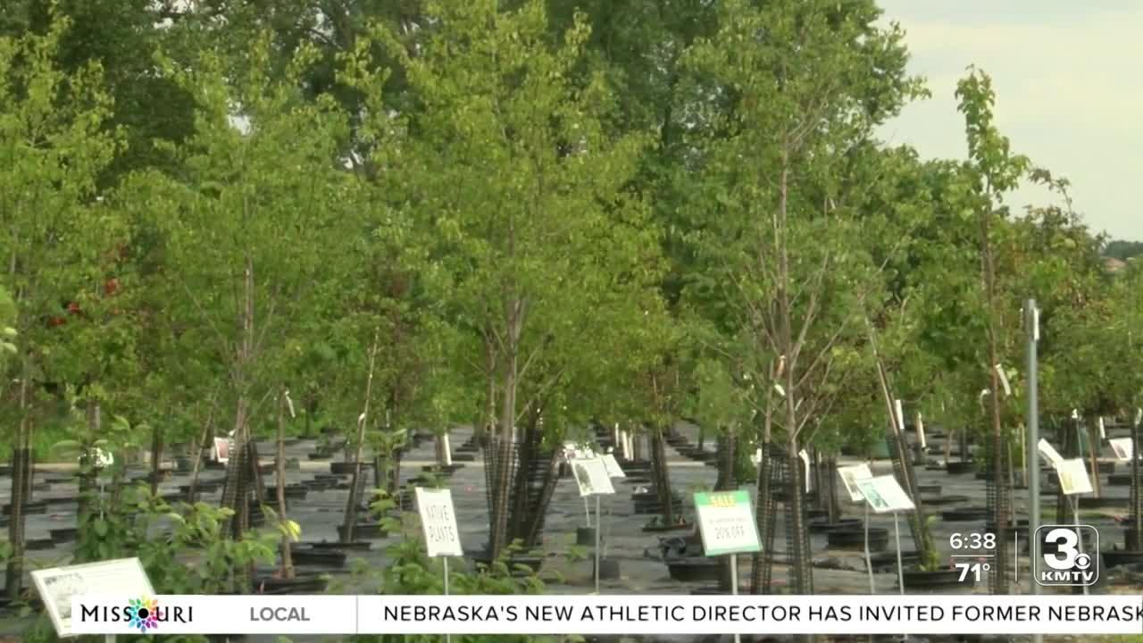 POSITIVELY THE HEARTLAND: Mulhall's partnering with Keep Omaha Beautiful to replace trees lost in storm
