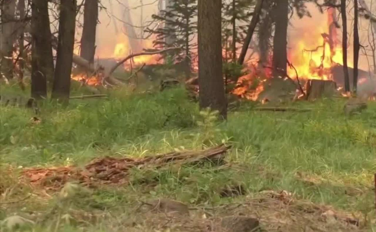 Top stories from today's Montana This Morning, 7-22-2021