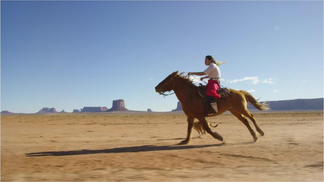 You'll never guess how tall the world's largest horse is