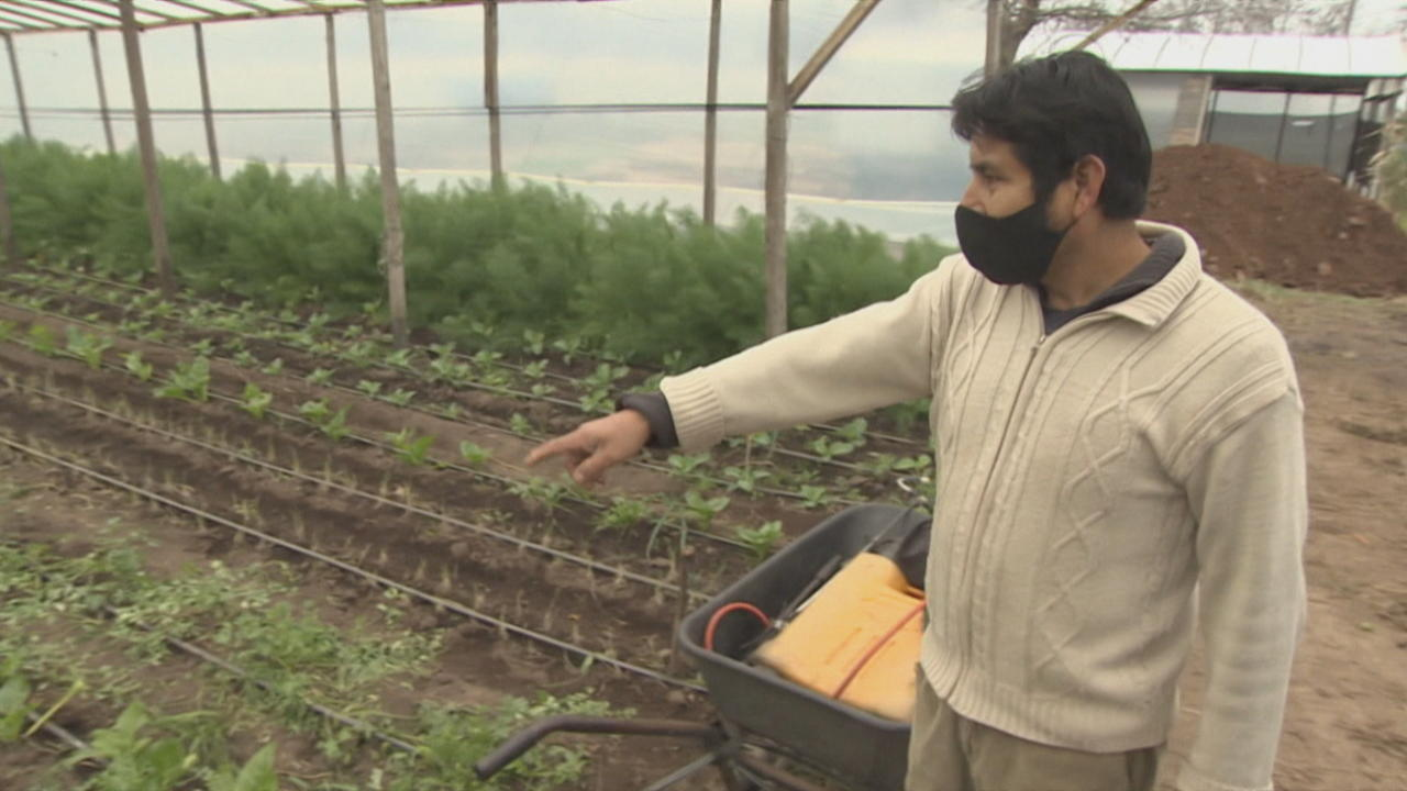 Argentina sees growing organic food farming movement