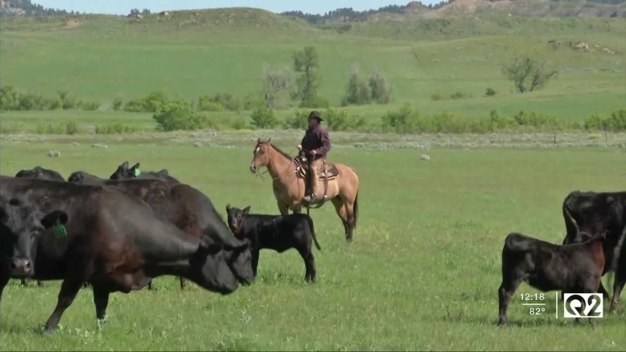 Montana Ag Report II 7-22-21