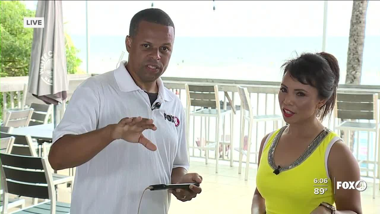 Examining red tide in SWFL in depth