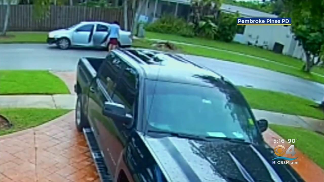 Video Captures As Driver Abandoning Dogs In Need Of Veterinary Help In Pembroke Pines