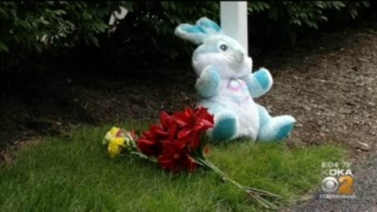5-Year-Old Hit, Killed By Vehicle In McCandless