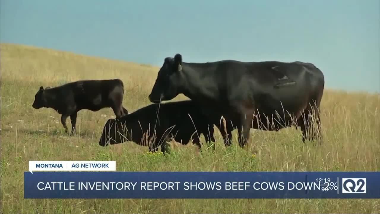 Montana Ag Report II 7-26-21