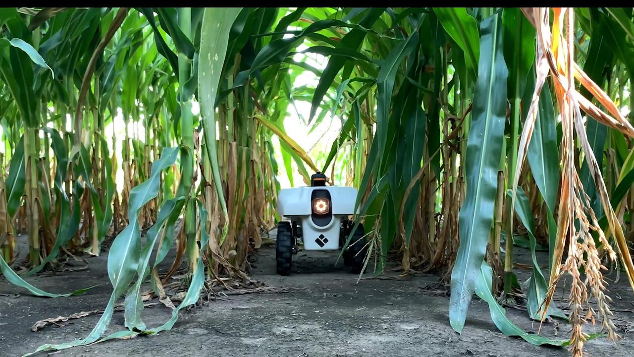 A data-collecting farming bot