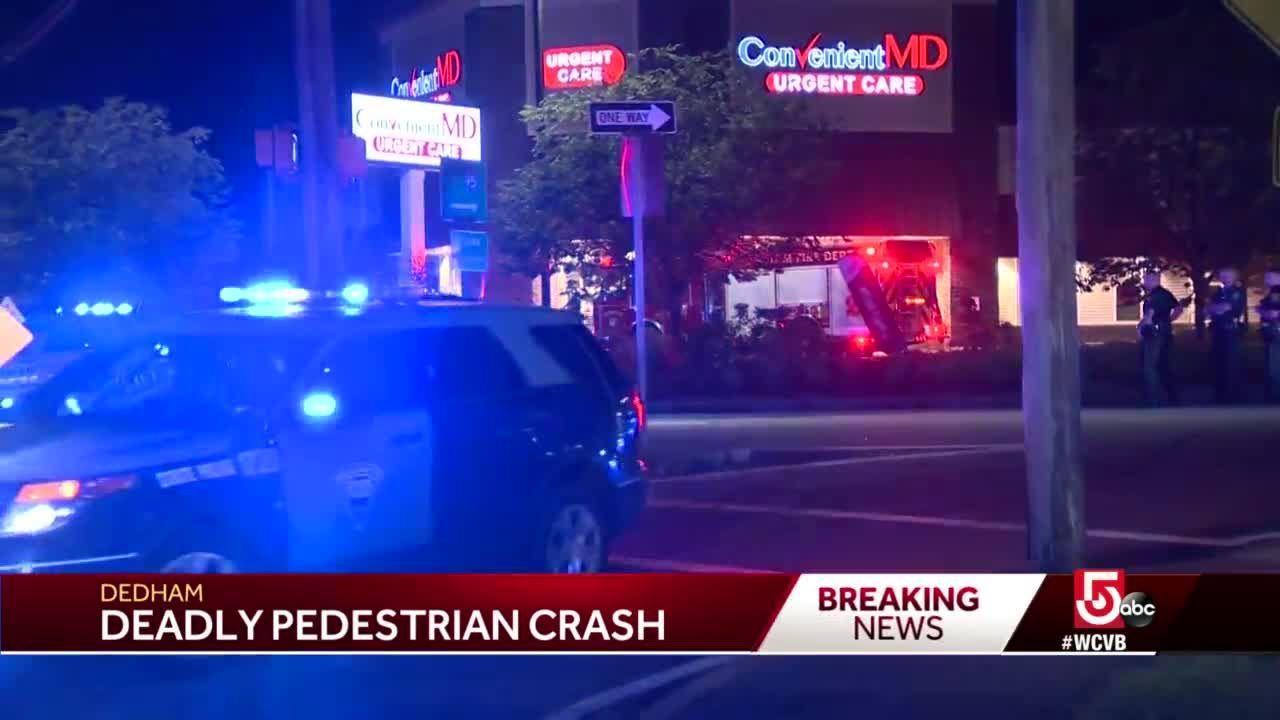 Pedestrian struck, killed by vehicle