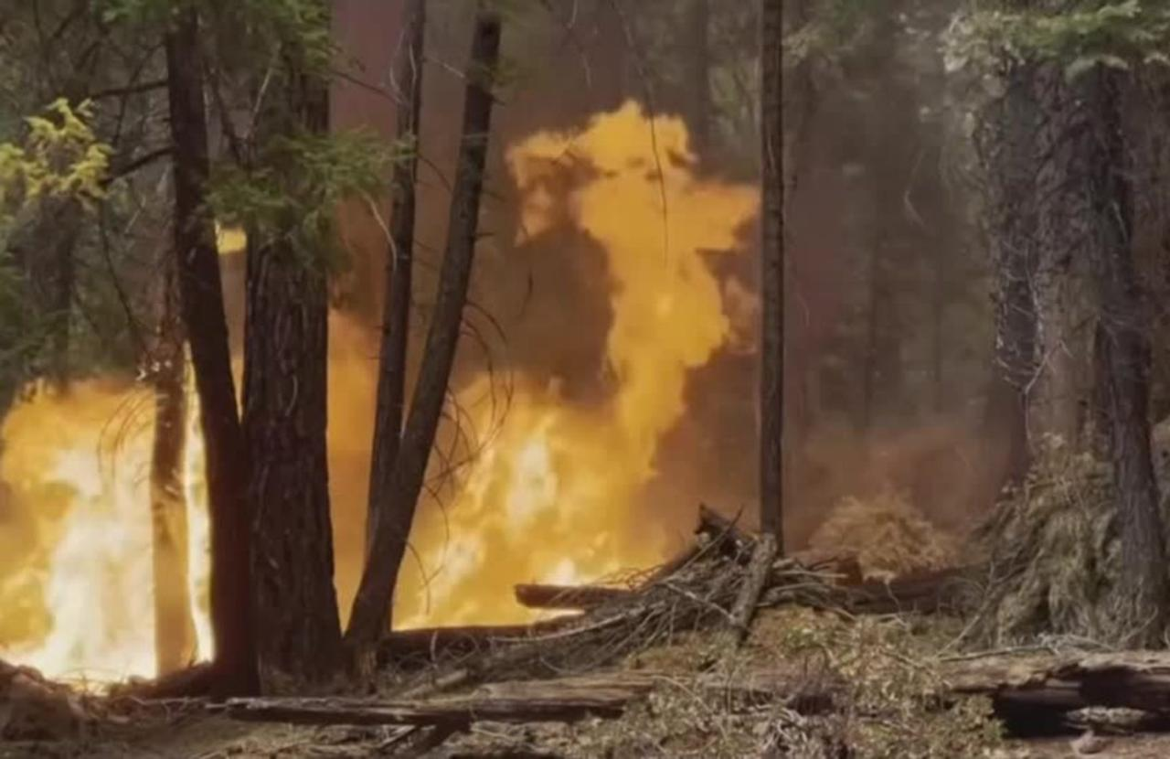 Eight missing as Dixie fire rages in California