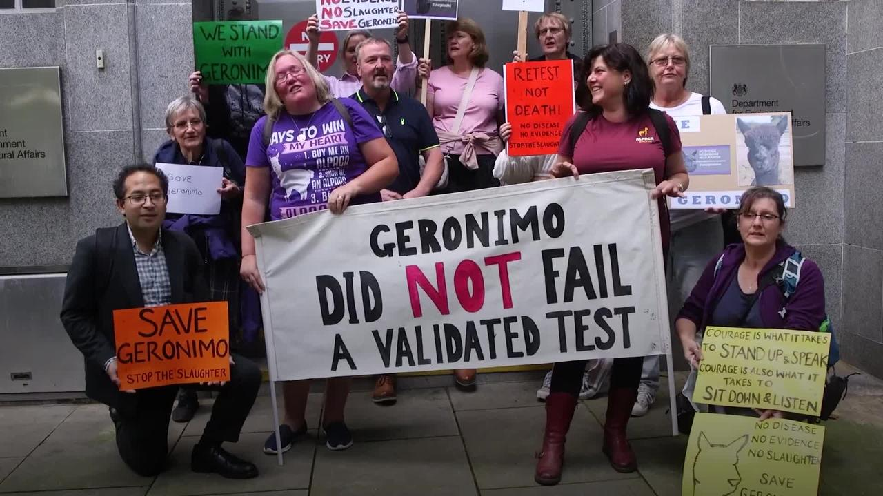 Crowds of protesters urge Government to halt Geronimo euthanisation