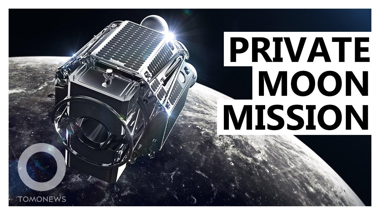 Japanese Startup Delivering UAE's Rover to the Moon in 2022
