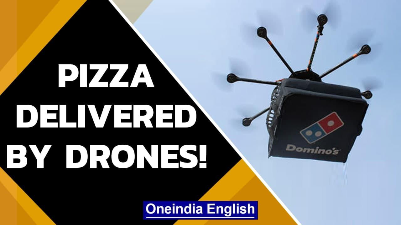 South Korea to deliver Domino's Pizza via drones in Sejong city    MOLIT   Oneindia News