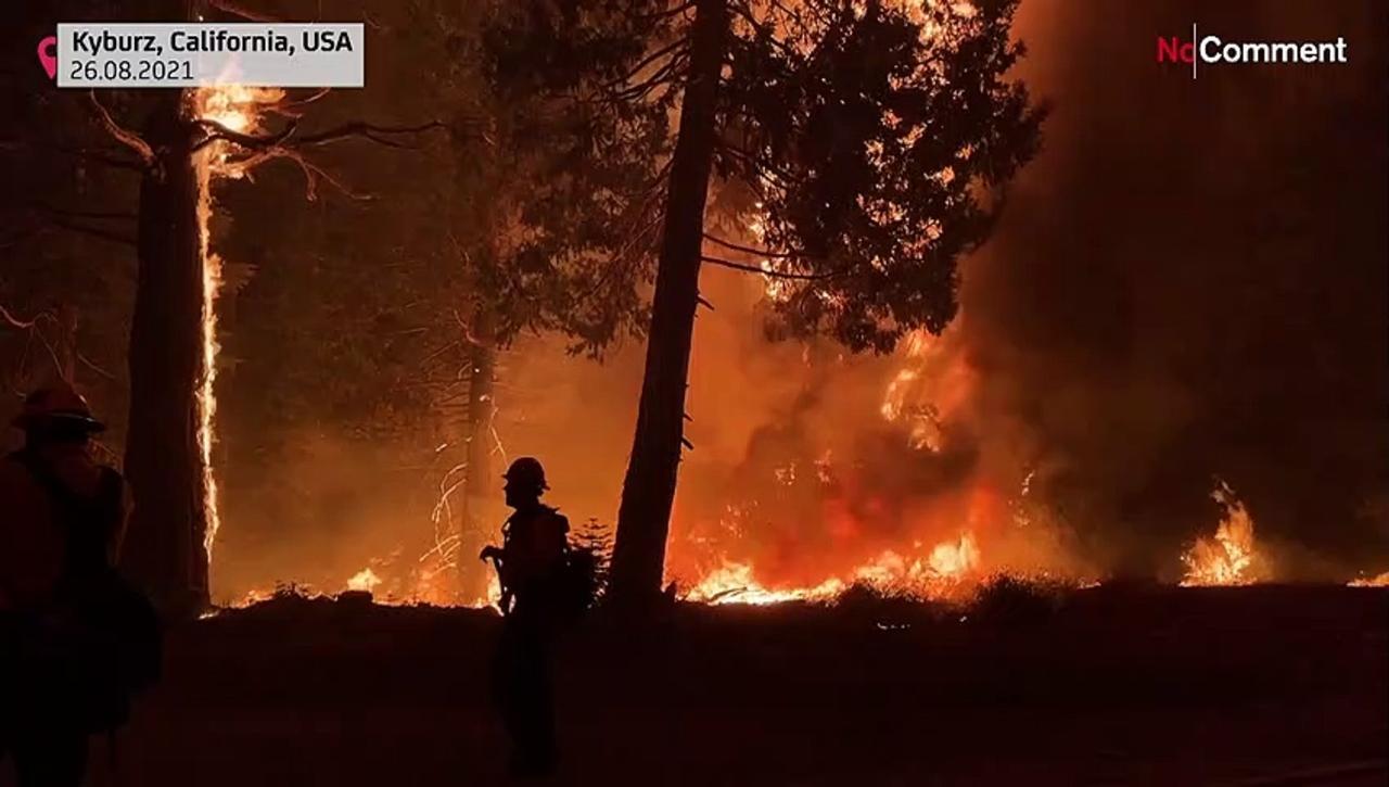 Smoke and flames surround California highway