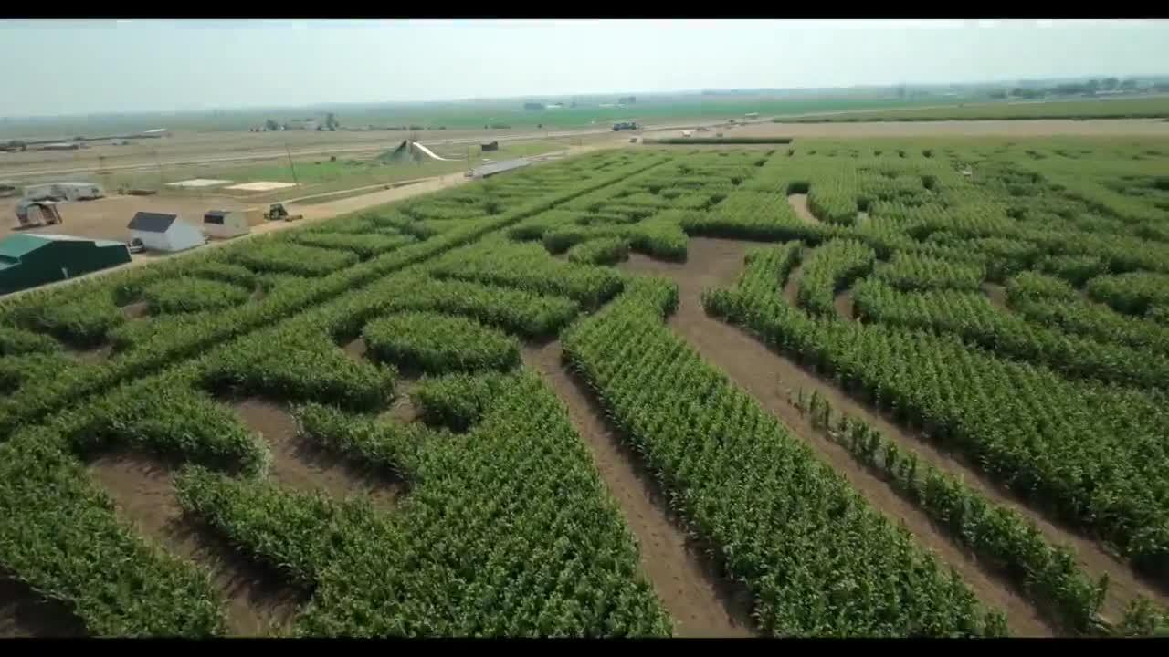 Take a flight through the Fritzler Farm Park corn maze honoring 9/11 victims