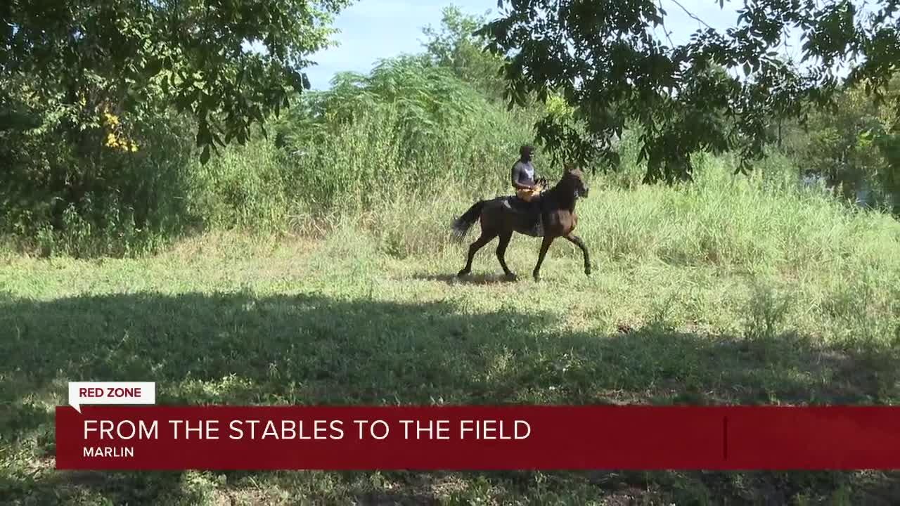 From the stables to the field