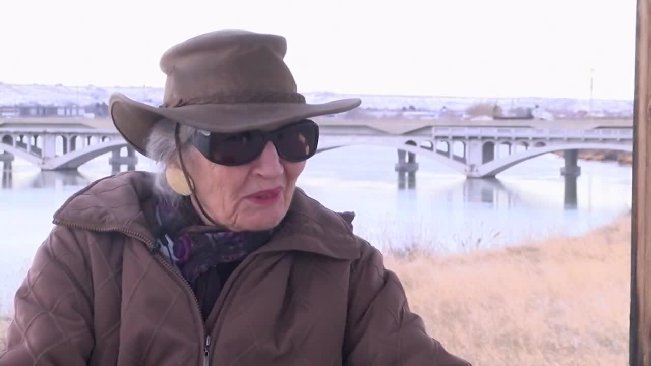 Bridge renamed to honor Arlyne Reichert