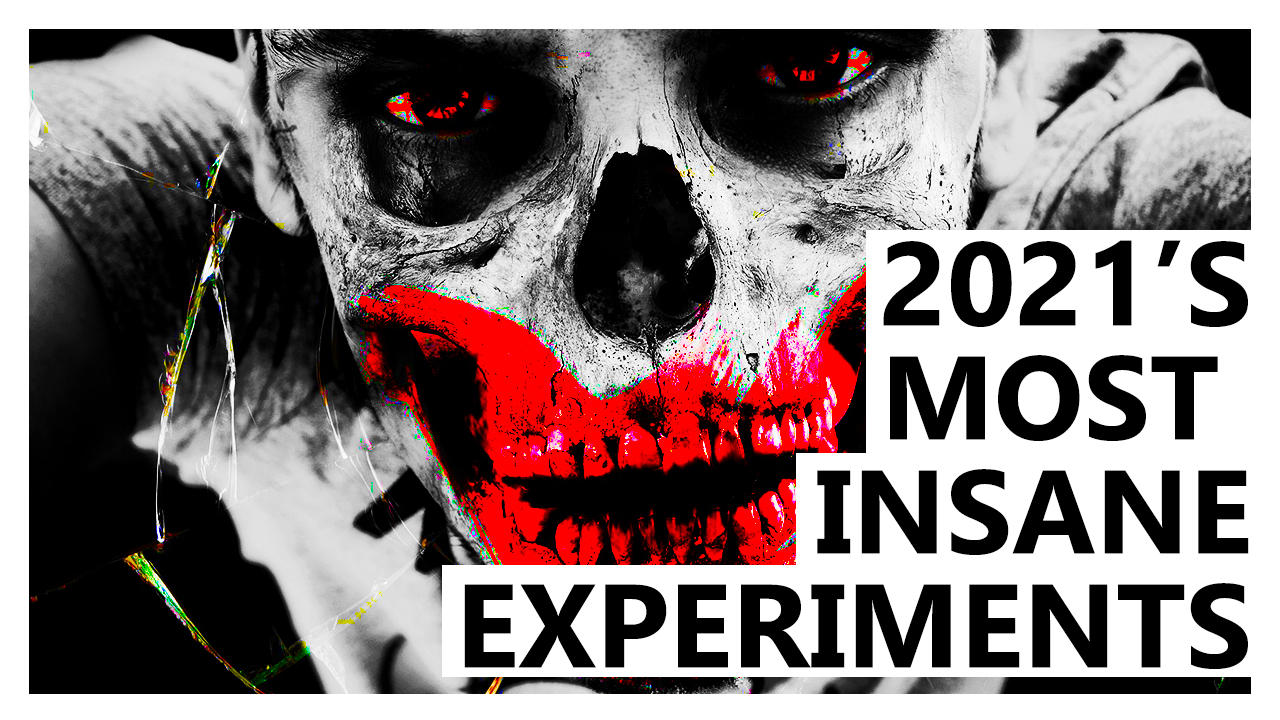 The Five Most Insane Scientific Studies of the Year