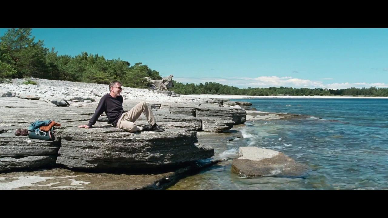 Bergman Island Movie