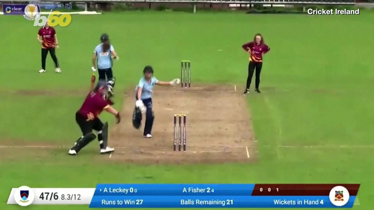 Hilarious Video of Puppy Invading Cricket Pitch to Steal the Ball