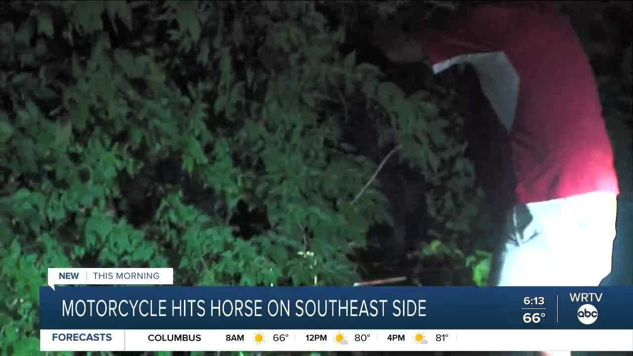 Motorcycle hits horse on southeast side