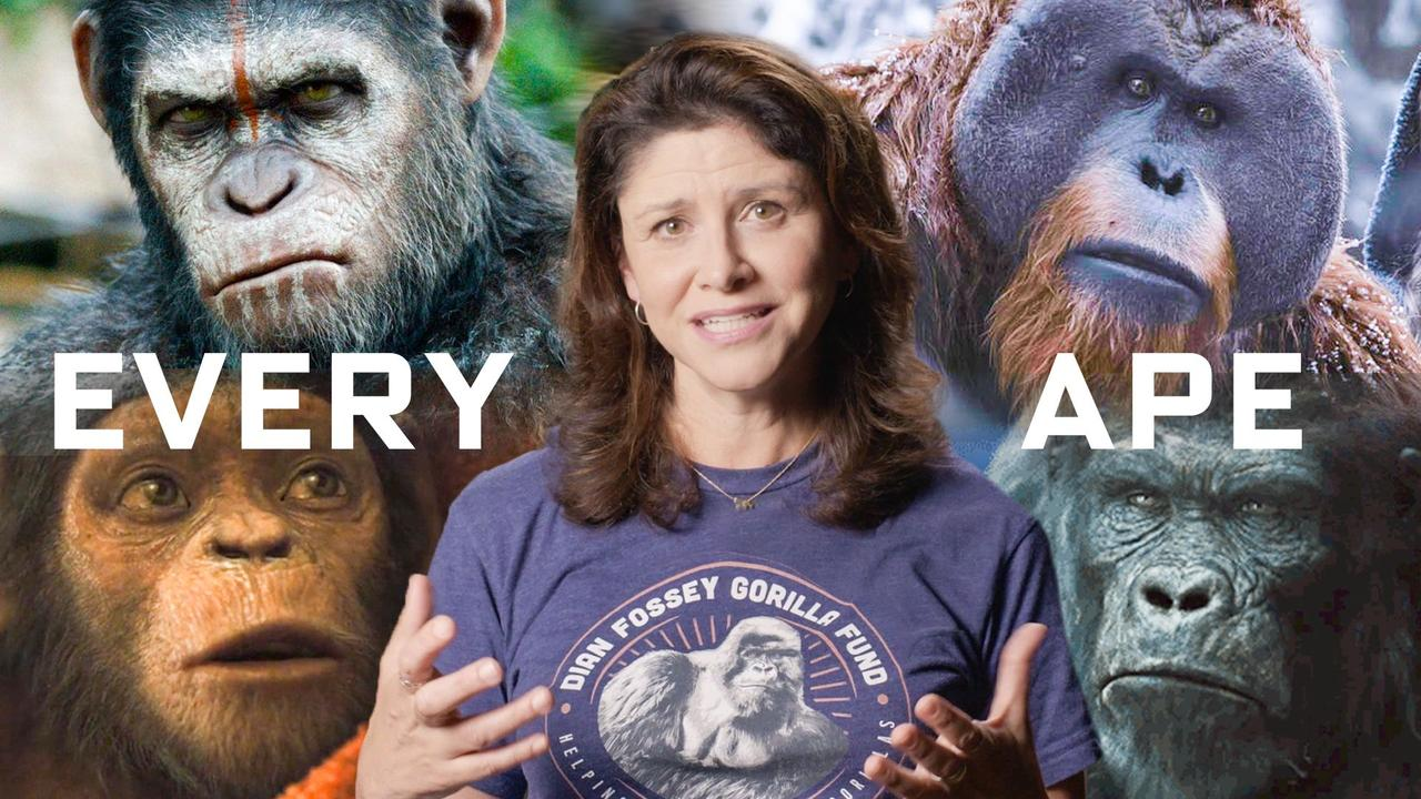 Every Ape in Planet of the Apes Explained