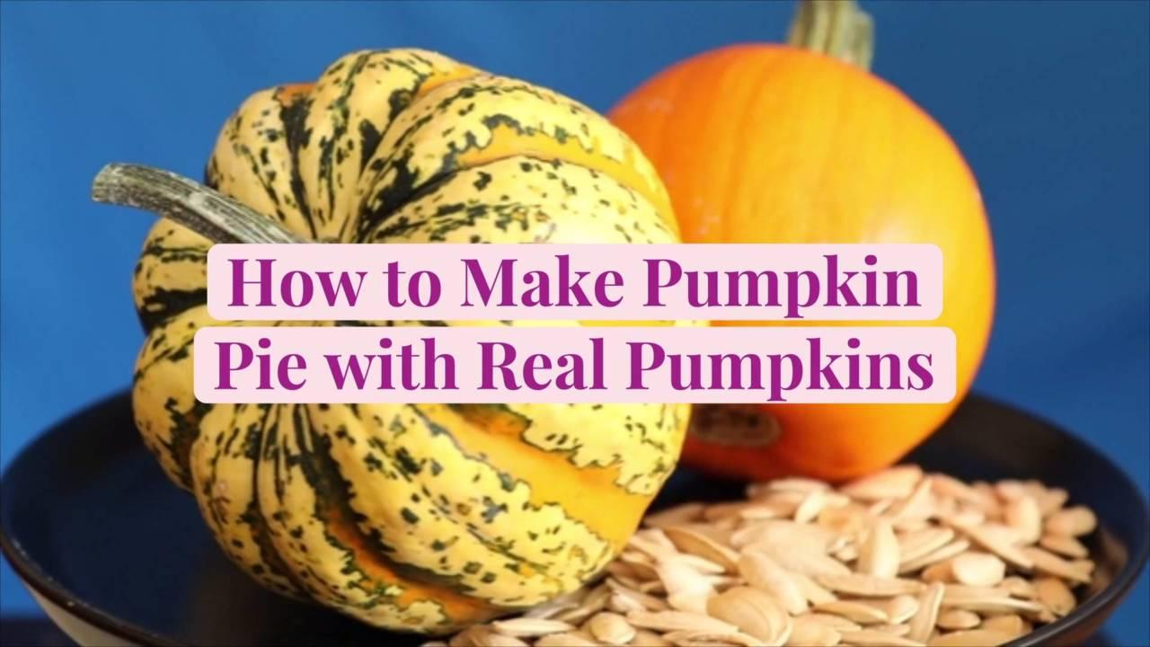 How to Make Pumpkin Pie with Real Pumpkins