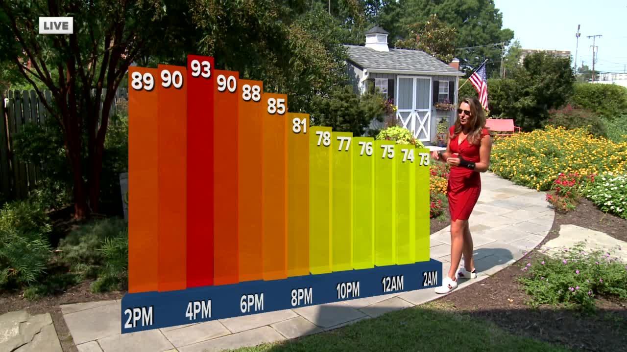 Frances' Noon Forecast